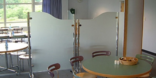 Standalone standing partition